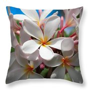 Plumerias Under A Blue Sky Throw Pillow