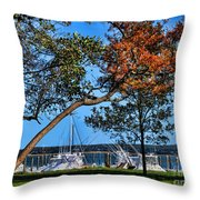 Plymouth Harbor In Autumn Throw Pillow