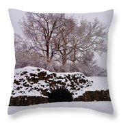 Plymouth Meeting Lime Kilns In The Snow Throw Pillow