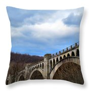 Pocket Full Of Posies Throw Pillow