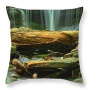 Poconos Cascades Throw Pillow