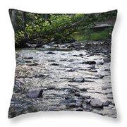 Poconos Gentle Stream Throw Pillow