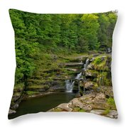 Poconos Ledges Waterfall Throw Pillow