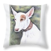 Podenco Ibicenco Throw Pillow