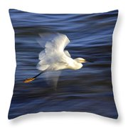 Poetry In Motion, Malibu California Throw Pillow