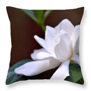 Poetry In White Throw Pillow