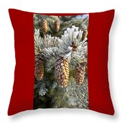 Pogonip  Throw Pillow