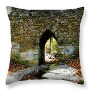 Poinsett Bridge Arch Throw Pillow