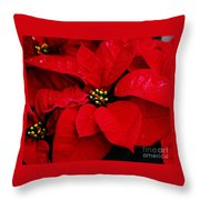 Poinsettia # 2 Throw Pillow
