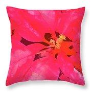 Poinsettia 1 Throw Pillow