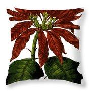 Poinsettia A Traditional Christmas Plant Vintage Poster Throw Pillow