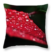 Poinsettia Leaf With Water Droplets Throw Pillow