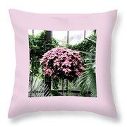 Poinsettia Tree Longwood Gardens Throw Pillow