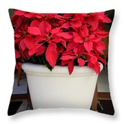 Poinsettias In A Planter Throw Pillow