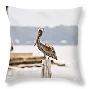 Point Clear Throw Pillow