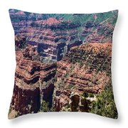 Point Imperial View Throw Pillow