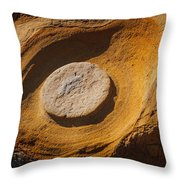 Point Lobos Abstract 1 Throw Pillow