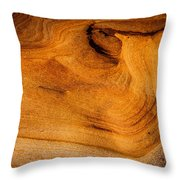 Point Lobos Abstract 10 Throw Pillow
