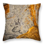 Point Lobos Abstract 12 Throw Pillow