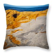 Point Lobos Abstract 14 Throw Pillow