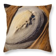Point Lobos Abstract 2 Throw Pillow