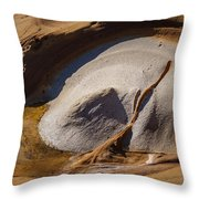 Point Lobos Abstract 3 Throw Pillow