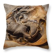 Point Lobos Abstract 7 Throw Pillow