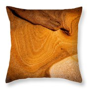 Point Lobos Abstract 9 Throw Pillow