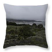 Point Lobos National Park Throw Pillow