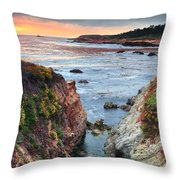 Point Lobos State Reserve 3 Throw Pillow by Emmanuel Panagiotakis