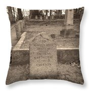 Point The Way Throw Pillow