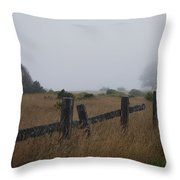 #pointcabrillo Throw Pillow