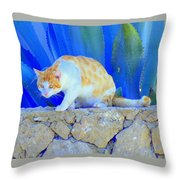 Look In The Blue For The Pointing Puma Throw Pillow