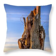Pointing To The Heavens Throw Pillow