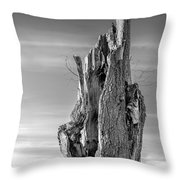 Pointing To The Heavens - Bw Throw Pillow