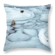 Points Of Winter Freeze Throw Pillow
