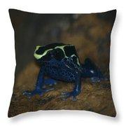 Poisonous Frog 02 Throw Pillow