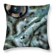 Poisonous Frog Eye Throw Pillow