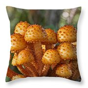 Poisonous Looking Mushrooms Throw Pillow