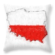 Poland Painted Flag Map Throw Pillow