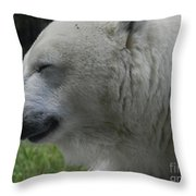 Polar Bear 4 Throw Pillow