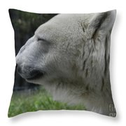 Polar Bear 5 Throw Pillow