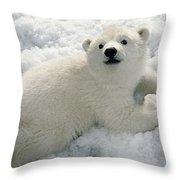 Polar Bear Cub Playing In Snow Alaska Throw Pillow