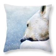 Circotm Decorative Pillow Mini Bear : Polar Bear Photograph by Darren Fisher