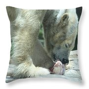 Polar Bear Feeding Throw Pillow