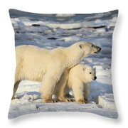 Polar Bear Mother And Cub Throw Pillow