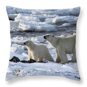 Polar Bear Mother And Cub Sniffing The Air Throw Pillow