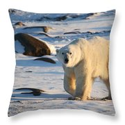 Polar Bear On The Tundra Throw Pillow