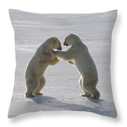 Polar Bear Pair Sparring Churchill Throw Pillow
