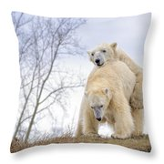 Polar Bear Spring Fling Throw Pillow